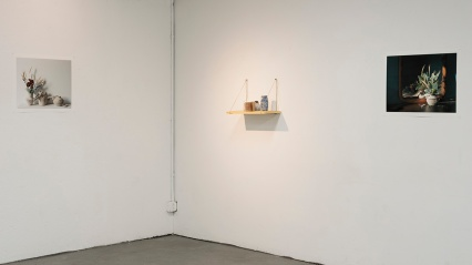 Installation View, Cyanotype Ceramics, Shelves